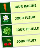 Les jours pour jardiner avec la Lune (racine, feuille, fleur, fruit)
