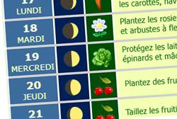 Planter, semer et jardiner avec la Lune
